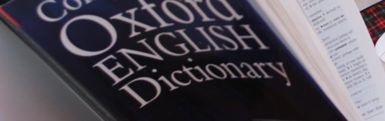 Cast Nylon Dictionary